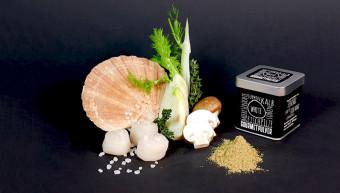 Gourmetpulver - White, 70g Würfeldose